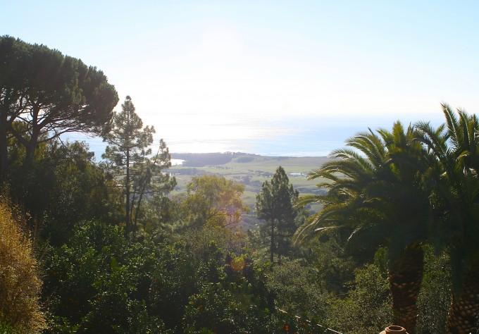 hearst castle, william hearst, san simeon california